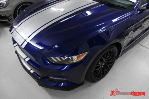 2016 Mustang stripes racing stripes