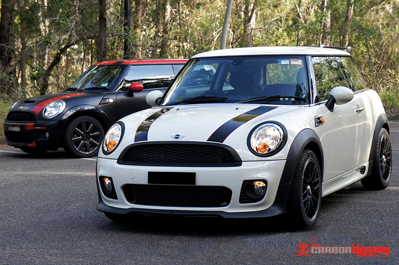 Mini Cooper Vinyl Stripes Carbon Demon