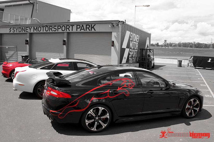 Jaguar Australia Show Cars